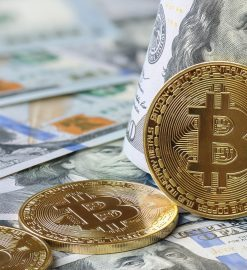 What You Do Not Find Out About Bitcoin Price